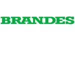 Brandes Logo